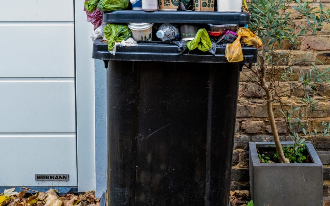 Which Wheelie Bin Storage Option Is Right for You